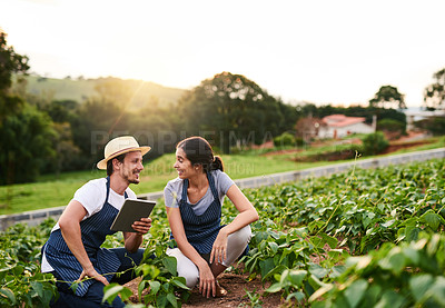 Buy stock photo Shot of a handsome young man using a tablet while working on the family farm with his wife
