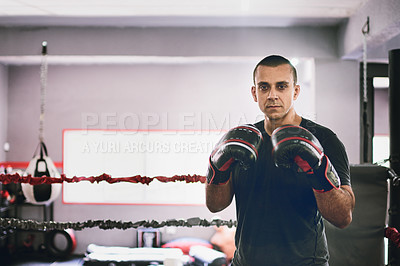 Buy stock photo Portrait of a confident young male boxer standing in a ring while wearing gloves and holding his hands up inside a gym during the day