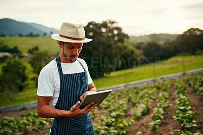 Buy stock photo Cropped shot of a handsome young man using a tablet while working on his farm