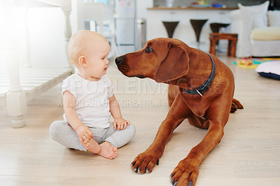 Buy stock photo Shot of an adorable baby girl playing with her pet dog at home