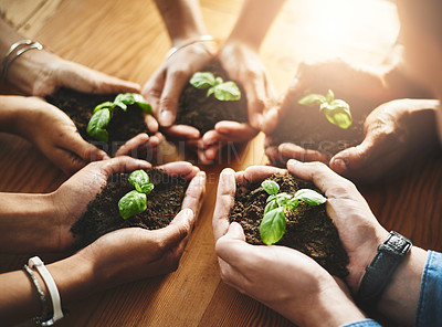 Buy stock photo Closeup shot of an unrecognizable group of businesspeople holding plants growing out of soil