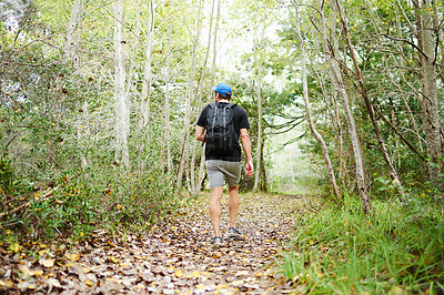 Buy stock photo Rearview shot of a young man hiking through the forest