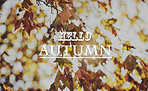 Autumn is the end of something but also the beginning
