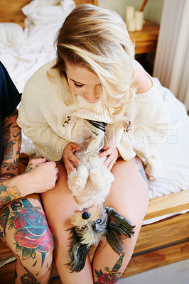 Buy stock photo Shot of an affectionate young couple playing with their dogs at home