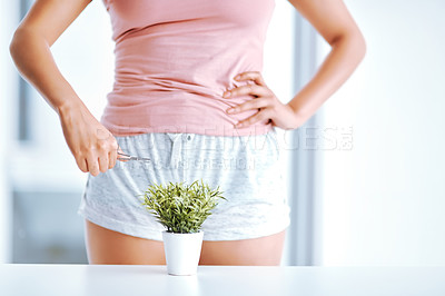 Buy stock photo Cropped shot of an unrecognizable woman trimming a plant