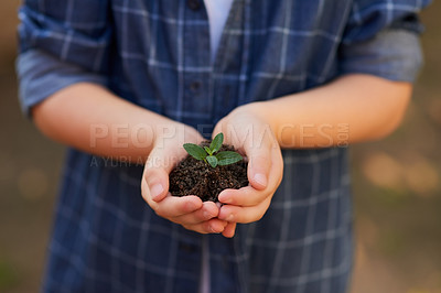 Buy stock photo Cropped shot of an unrecognizable little boy holding a handful of soil with a budding plant outside