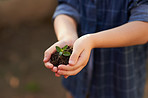 Children will plant the seeds of the future