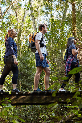 Buy stock photo Shot of young people hiking in the woods