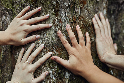 Buy stock photo Shot of a group of unidentifiable friends putting their hands on a tree trunk