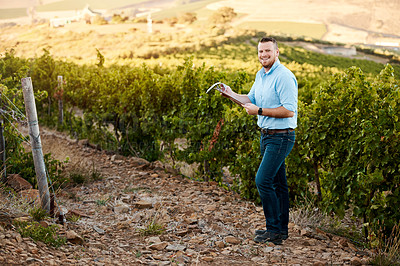 Buy stock photo Portrait of a farmer working in a vineyard