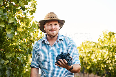 Buy stock photo Shot of a male farmer working in his vineyard