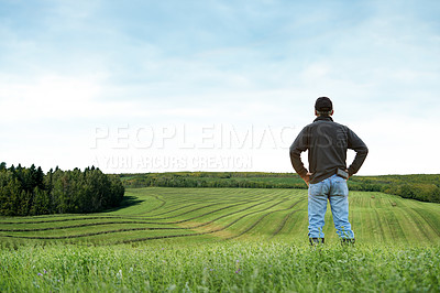 Buy stock photo Rearview shot of a farmer standing on a field