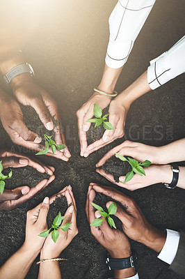 Buy stock photo Cropped shot of a group of people holding plants growing out of soil