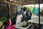 Because nobody wants pesticides on their food