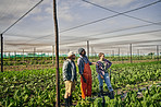 The best team in the organic farming business