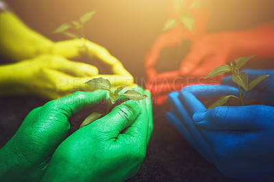 Buy stock photo Cropped shot of unrecognizable people holding budding plants in their multi colored hands
