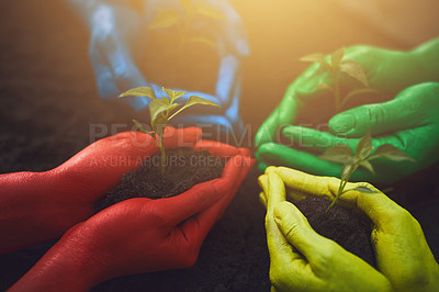 Buy stock photo Cropped shot of unrecognizable people holding budding plants in their gloved hands