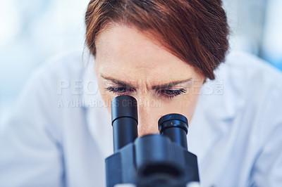 Buy stock photo Cropped shot of scientists working in their laboratory