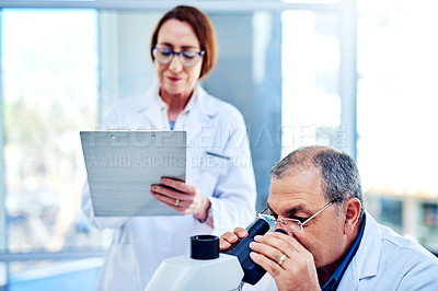 Buy stock photo Shot of a mature scientist using a microscope in a laboratory with his colleague in the background