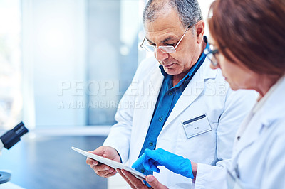 Buy stock photo Shot of two mature scientists using a digital tablet in a laboratory