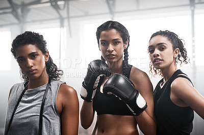 Buy stock photo Portrait of a group of fit young women boxing together at the gym