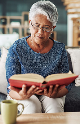 Buy stock photo Cropped shot of a focussed elderly woman reading from the bible while being seated on a couch at home during the day