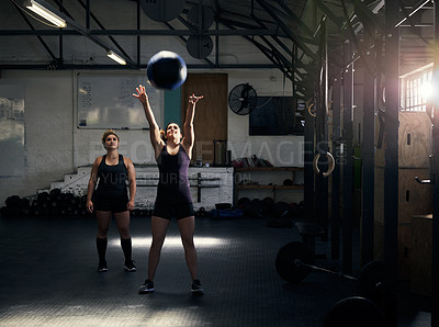Buy stock photo Full length shot of an attractive young woman working out with her personal trainer in the gym
