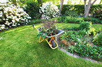 Garden and wheelbarrow