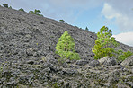 The Cumbre Nueva in La Palma