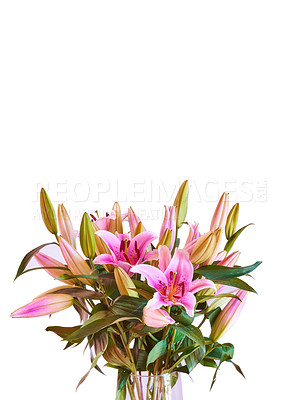 Buy stock photo Bouquet with different kind of flowersBouquet with different kind of flowers