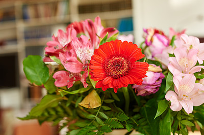 Buy stock photo Bouquet with different kind of flowers