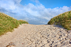 The west coast beach of Jutland, Denmark