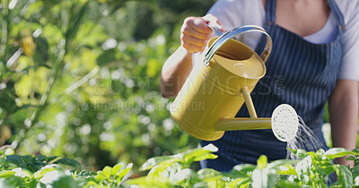Buy stock photo Cropped shot of an unrecognizable female farmer watering her crops on the farm
