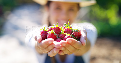 Buy stock photo Cropped portrait of an unrecognizable young female farmer holding a bunch of strawberries while standing on her farm