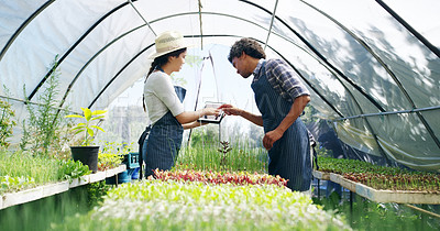 Buy stock photo Cropped shot of an affectionate young couple using a tablet while working in a greenhouse on their farm