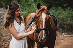 Spend time with your horse, he'll love you for it