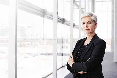 Buy stock photo Portrait of a confident mature businesswoman standing in a convention centre