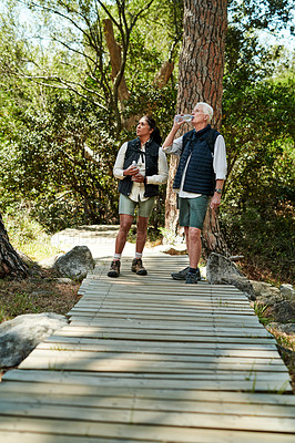 Buy stock photo Full length shot of a senior couple hiking together out in the mountains