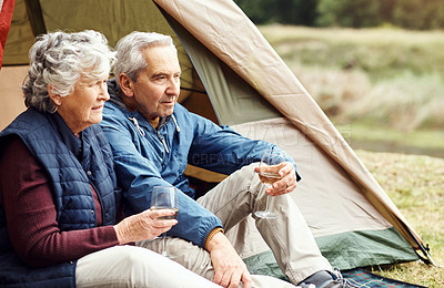 Buy stock photo Shot of a senior couple drinking wine while camping in the wilderness