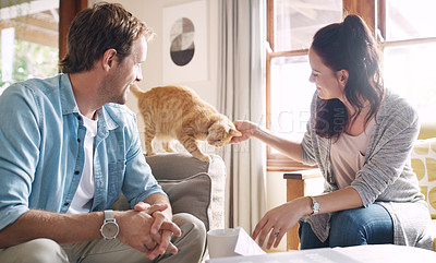 Buy stock photo Cropped shot of an affectionate young woman petting her cat while sitting with her husband in their living room