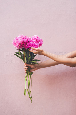 Buy stock photo Cropped shot of an unrecognizable woman holding a bouquet of flowers against a pink background