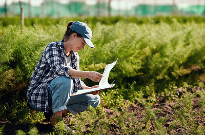 Buy stock photo Full length shot of an attractive young female farmer looking over paperwork while working on her farm