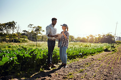 Buy stock photo Full length shot of two young farmers looking at a tablet while working on their farm