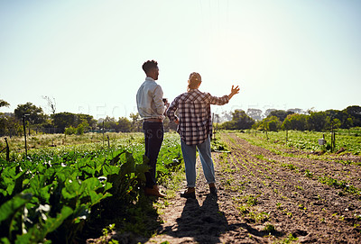 Buy stock photo Rearview shot of two young farmers looking at a tablet while working on their farm