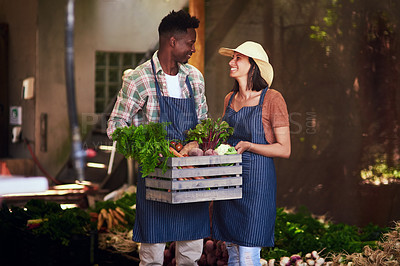 Buy stock photo Shot of a happy young couple  carrying a crate full of freshly picked vegetables at their farm