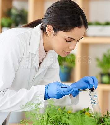 Buy stock photo Shot of a young scientist putting soil samples into a bag in a lab