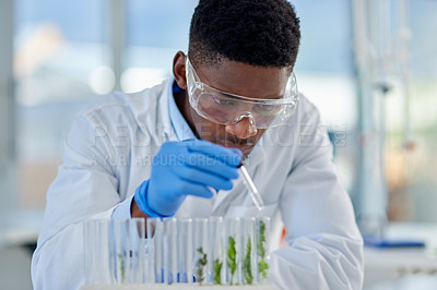Buy stock photo Cropped shot of a focused young male scientist giving water to a plant inside of a laboratory during the day