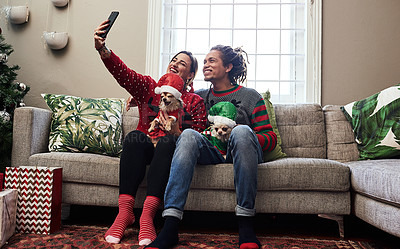 Buy stock photo Shot of a cheerful young couple holding their pet dogs while taking a selfie and  being seated on a sofa during christmas time at home