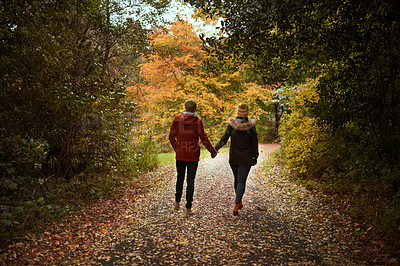 Buy stock photo Rearview shot of an unreocognizable couple walking through a park together in late autumn
