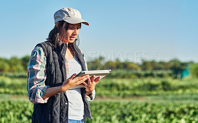 Buy stock photo Shot of a young female farmer using a digital tablet while inspecting crops on her farm